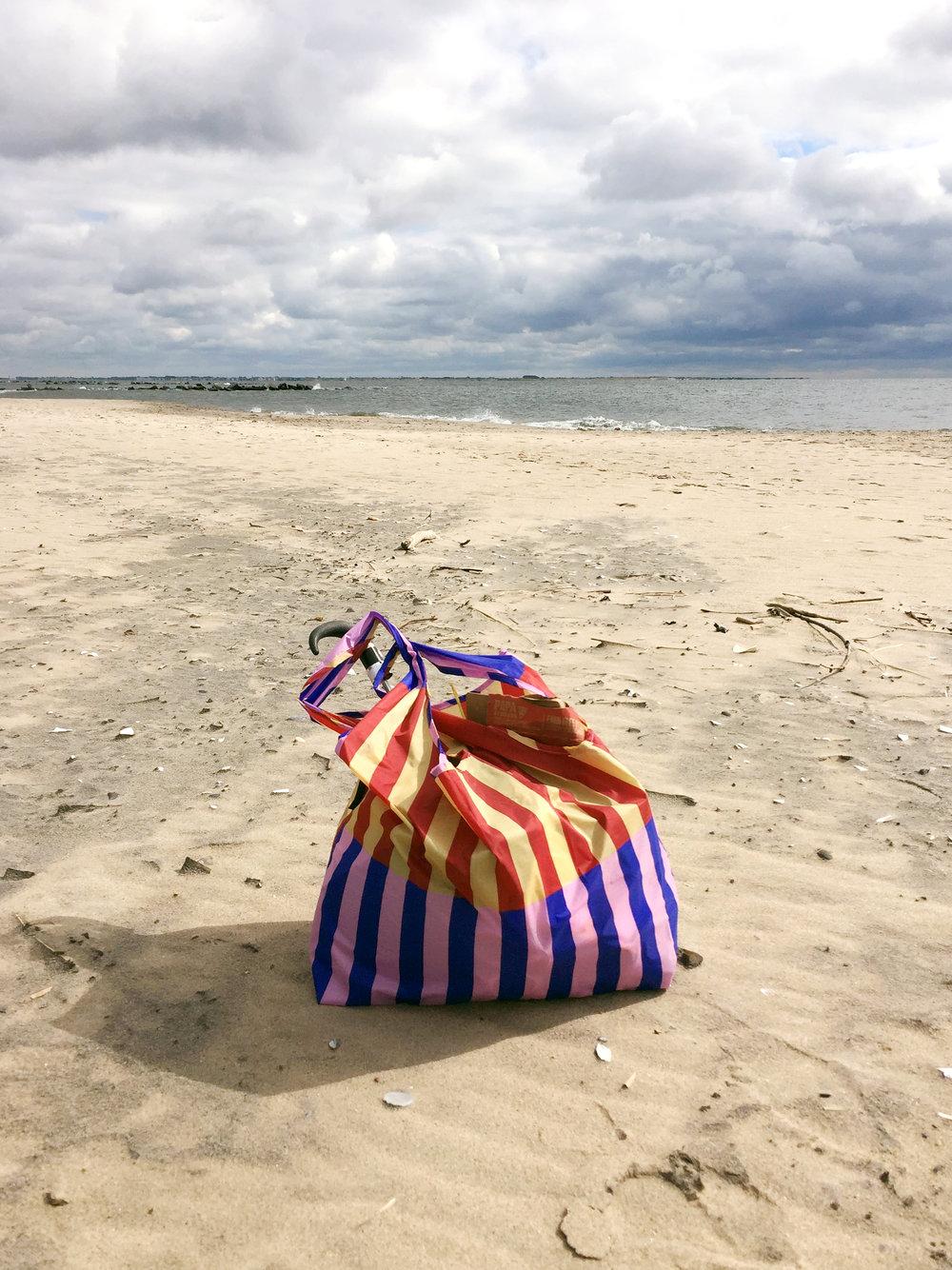 amy_chen_design_coney_island_beach_clean_up_baggu_bag.JPG