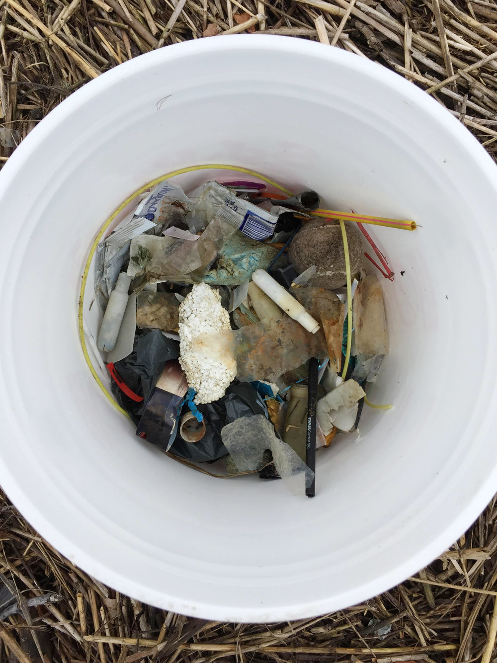 amy_chen_design_sandy_hook_beach_clean_bucket.JPG