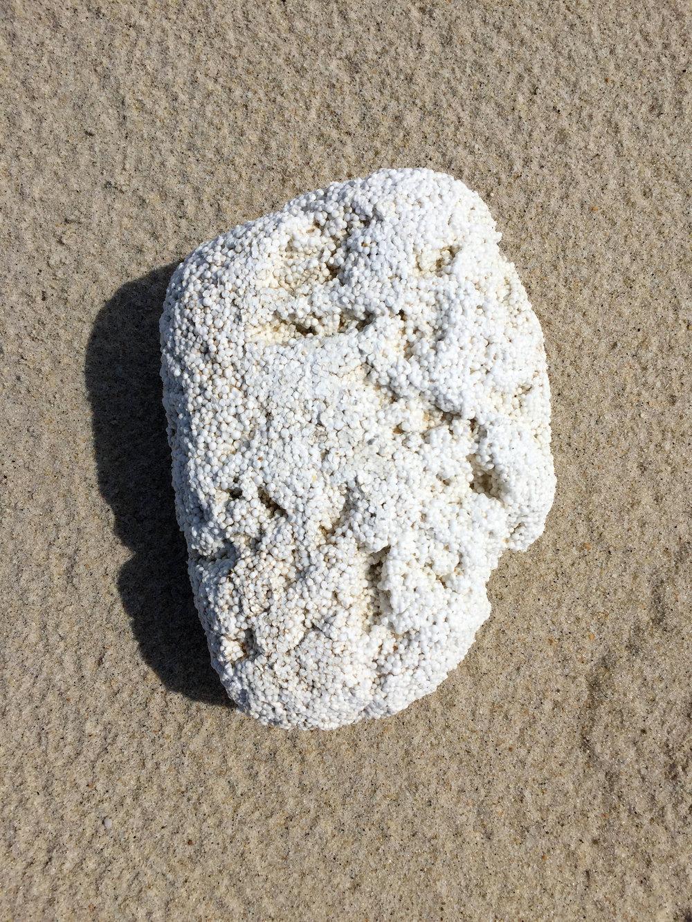 amy_chen_design_sandy_hook_beach_clean_styrofoam.JPG