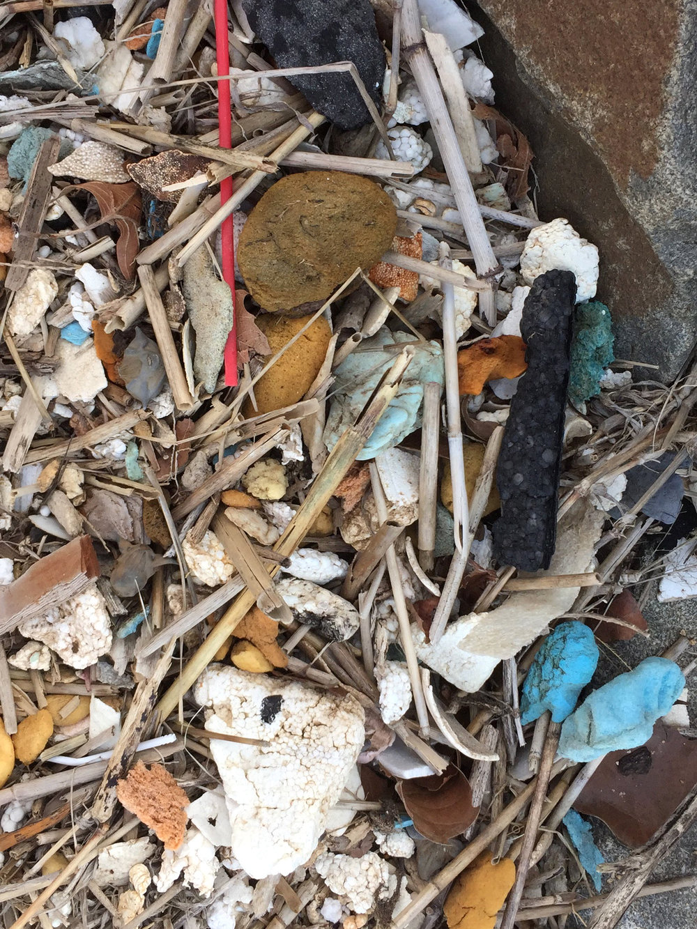amy_chen_design_sandy_hook_beach_clean_plastic_fort_hancock_officers_row.jpg
