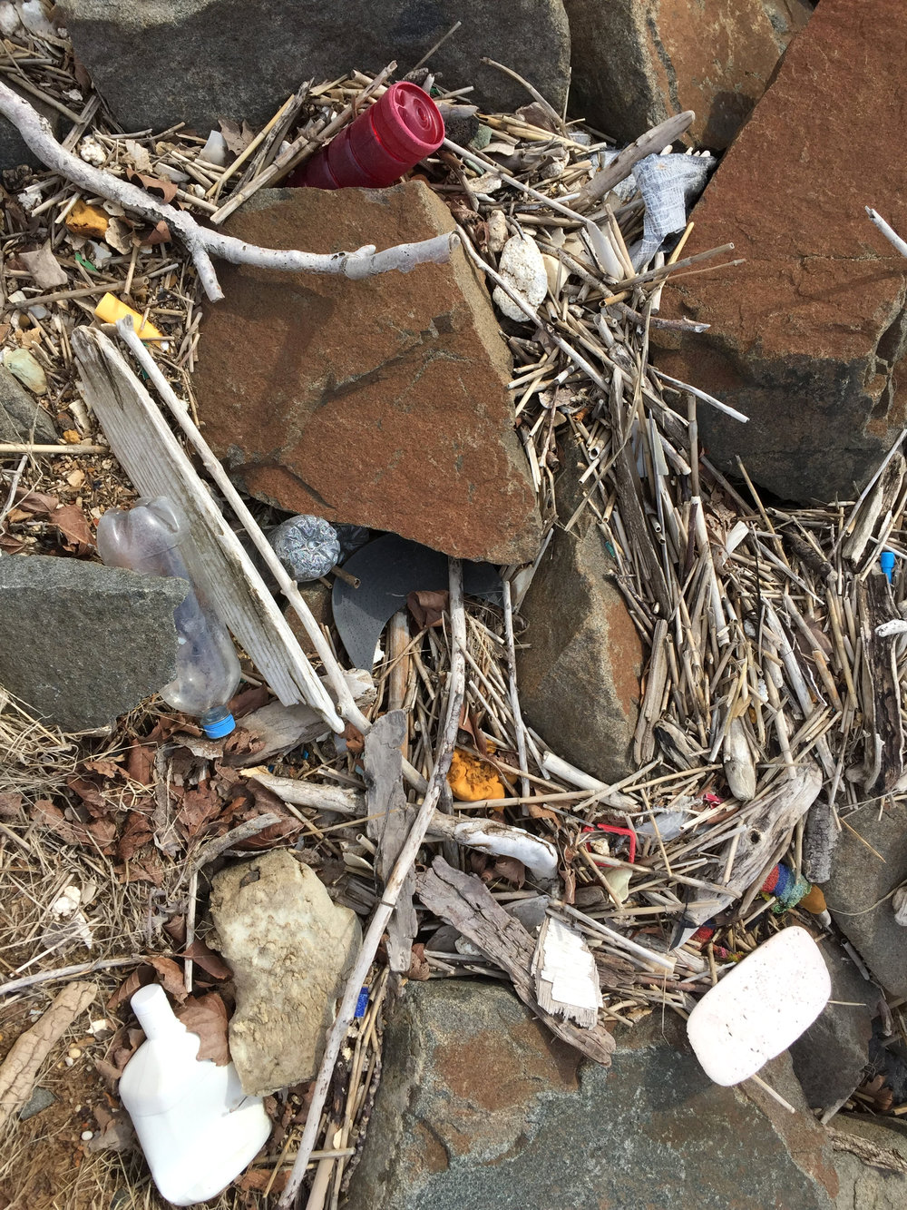 amy_chen_design_sandy_hook_beach_clean_plastic_fort_hancock_officers_row_3.JPG