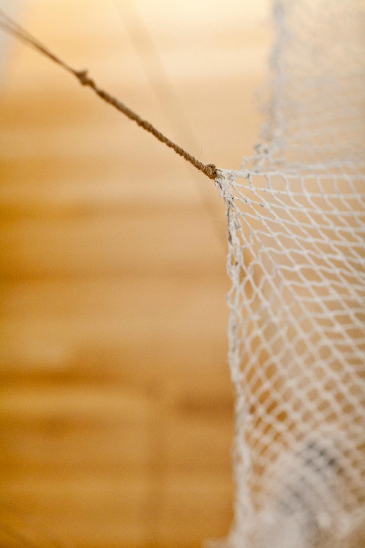 trawl2.jpg