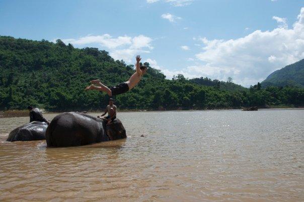 Jentry-elephant.jpg