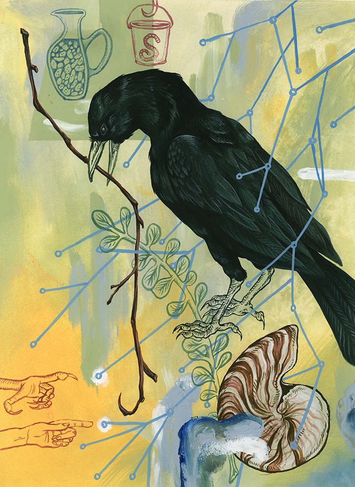Aesop's New Caledonian, on the intelligence of crows in New Caledonia.