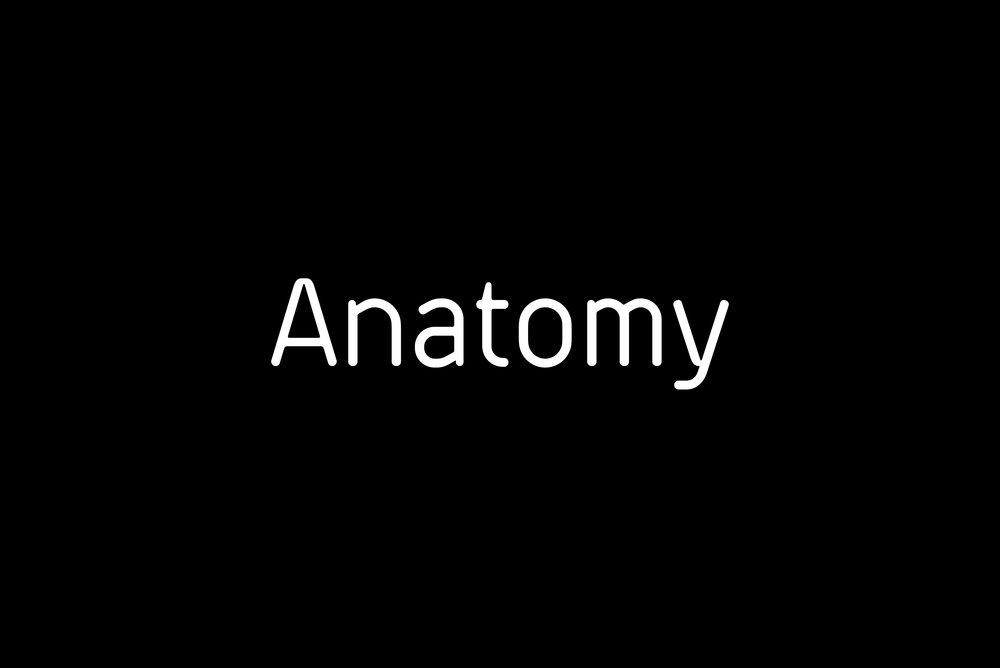 LAT_Anatomy_Logo3.jpg