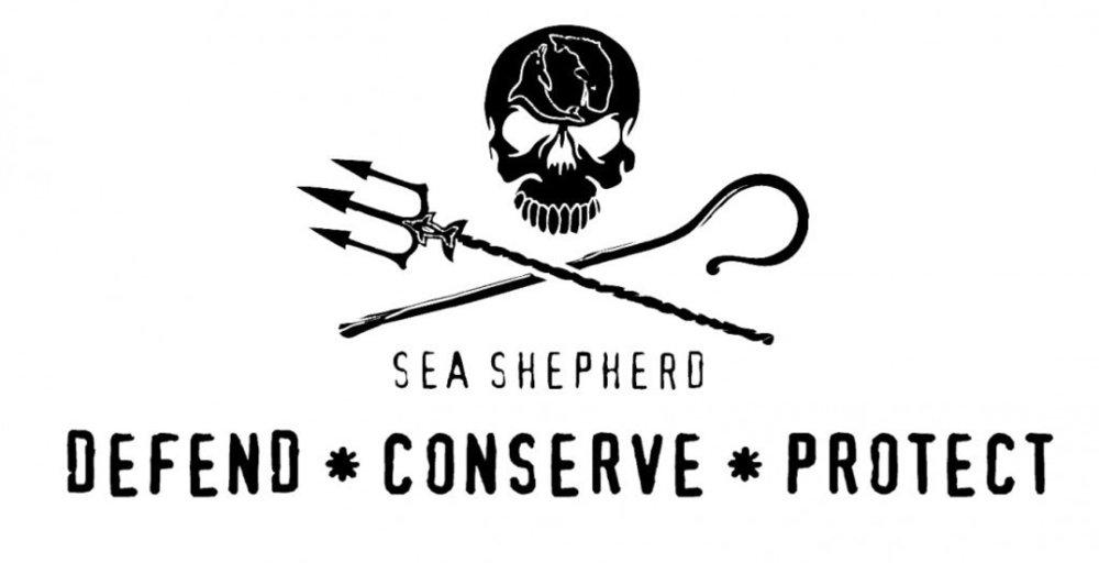 Sea Shephard.jpg
