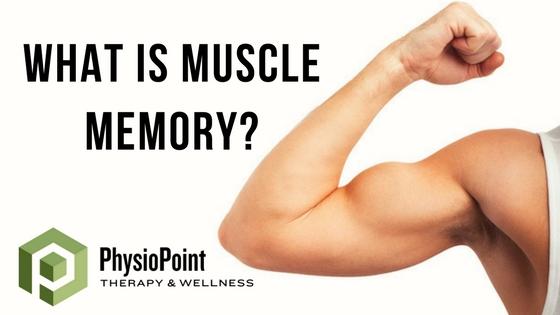 Muscle_Memory_-_BLOG.jpg