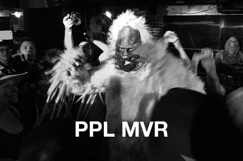 PPLMVR2.jpg