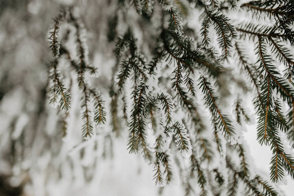 ashley_schulman_photography-winter_wedding_tampere-1.jpg