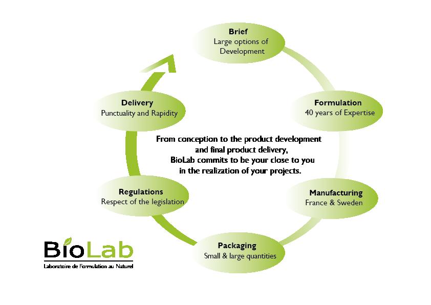 BioLab' project development diagram