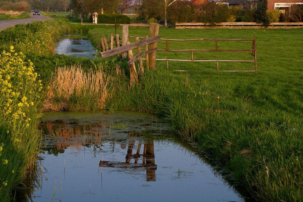Friesland 5.jpg