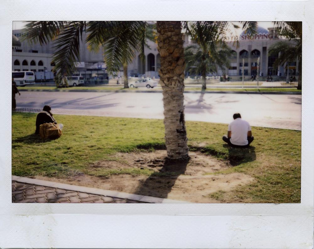 2mengrasstree.jpg
