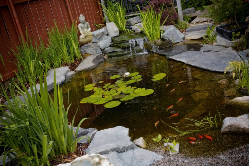 mark bowering-garden-001 1024x683.jpg