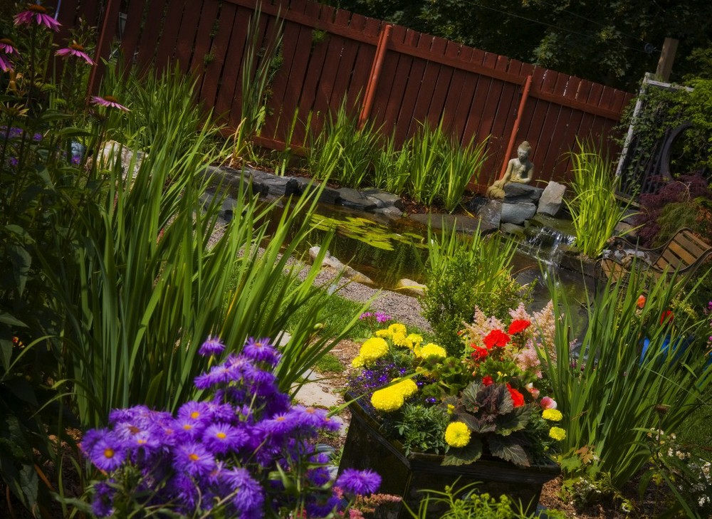 mark bowering-garden-047 1024x747.jpg