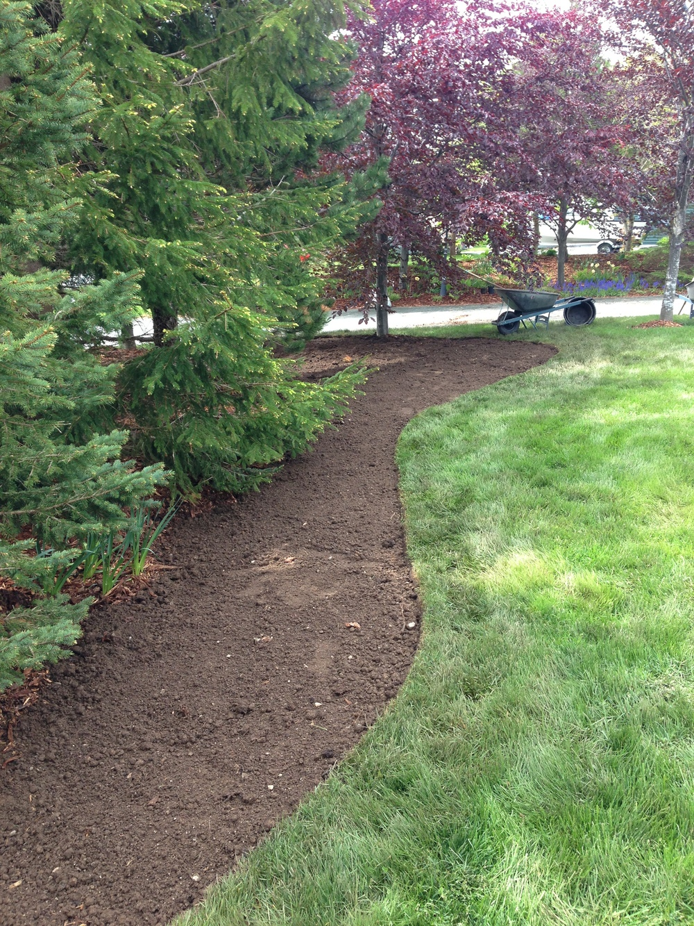 Creating a woodland bed with edging.jpg