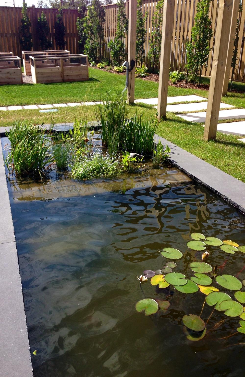 Biological Filtration Marsh and vegetable beds.jpg