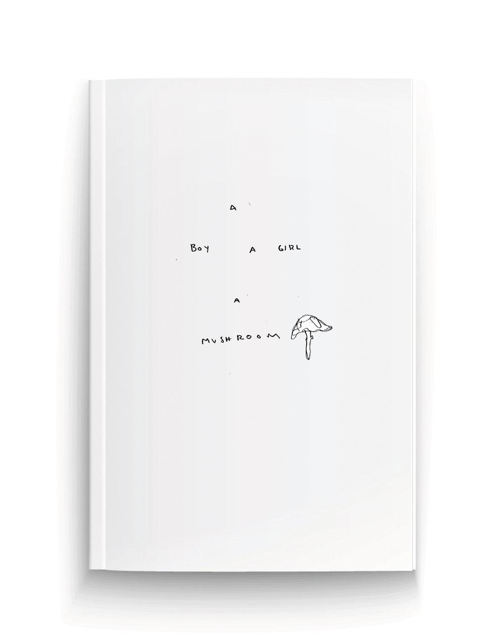 A Boy A Girl A Mushroom Book Cover.jpg