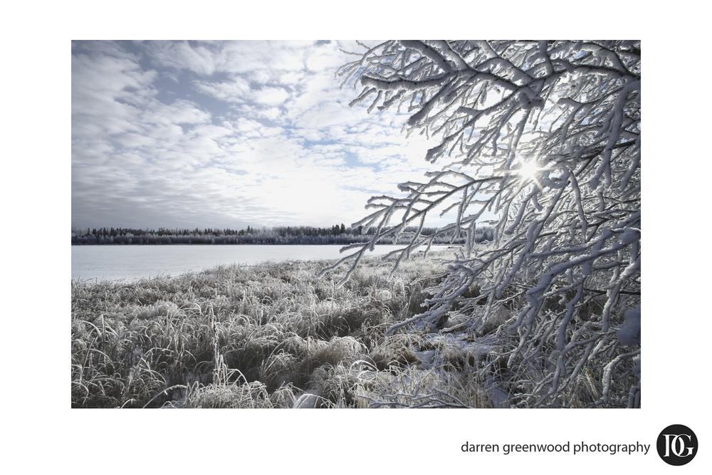 landscapes014.jpg