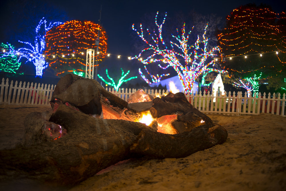 Photo courtesy of Austin Trail of Lights