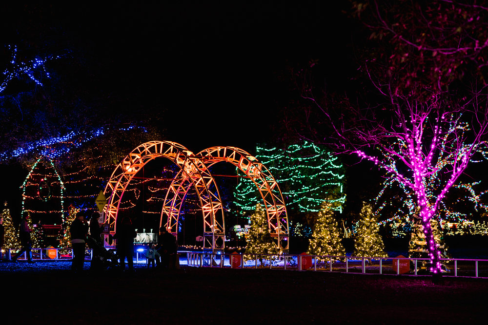 Photo by Dear Wesleyann Photography, Courtesy of Austin Trail of Lights