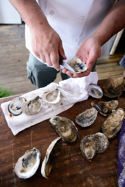 oyster-bar-20140527-095039.jpg