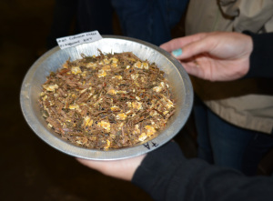 This sorghum silage feed ration sample was passed around for the workshop attendees to view.