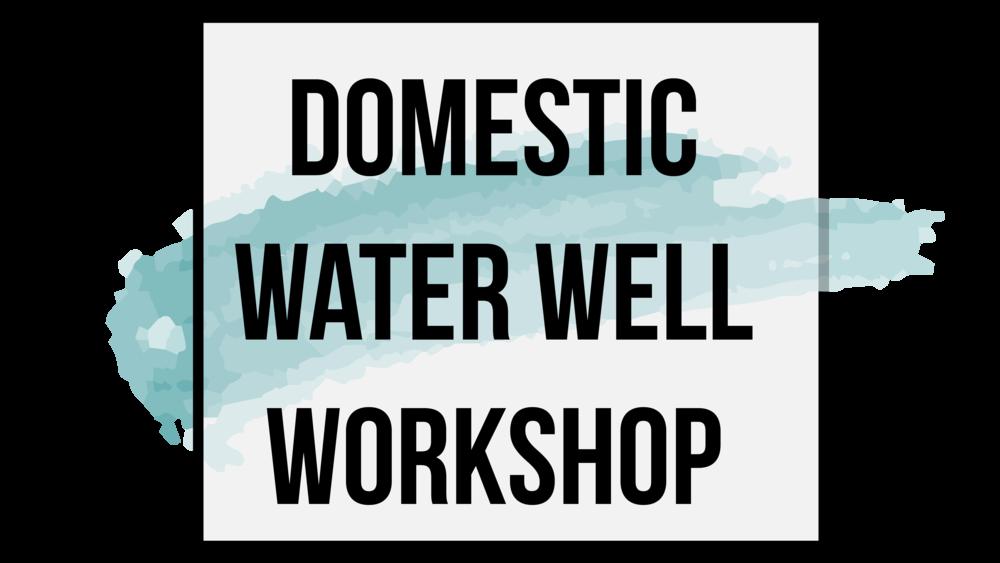 DomesticWellWorkshop_WhiteLogo-01.png