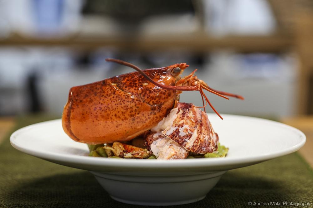 Lobster Papardelle Plated.jpg