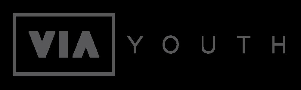 Via_Youth-Full_Horizontal_Logo-Gray.png