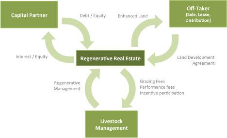 regenerative-real-estate-developer.jpg