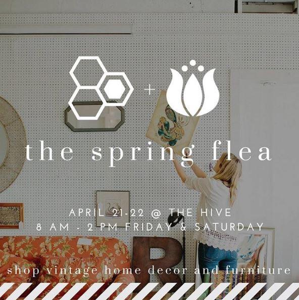 spring flea.JPG