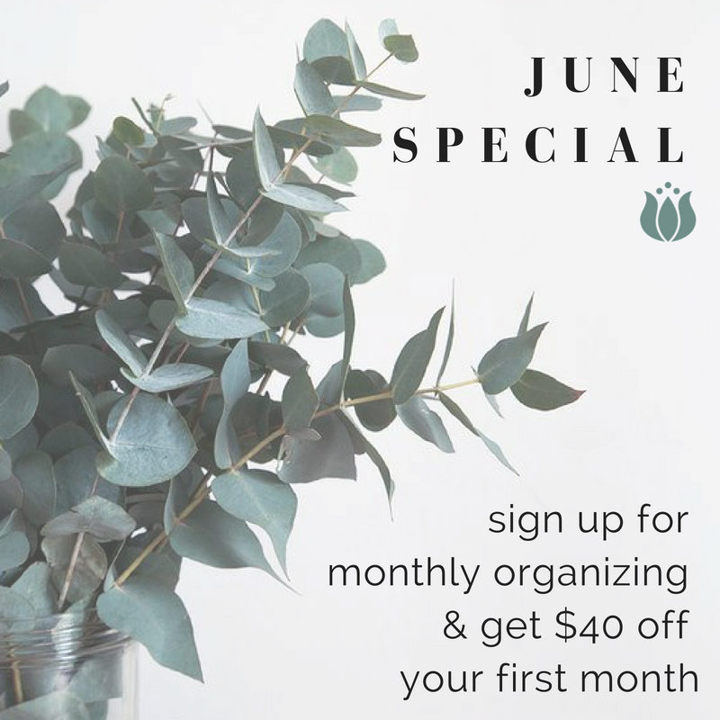 june - monthly organizing.png