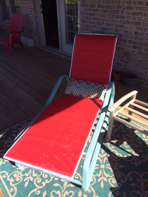 Chesapeake 9210 Chaise with Red Mesh 2.JPG