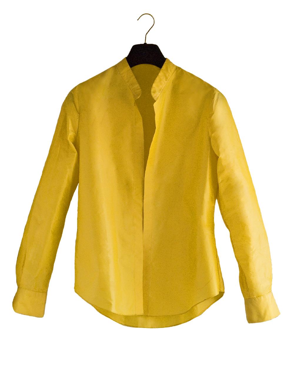 Yellow banded collar.jpg