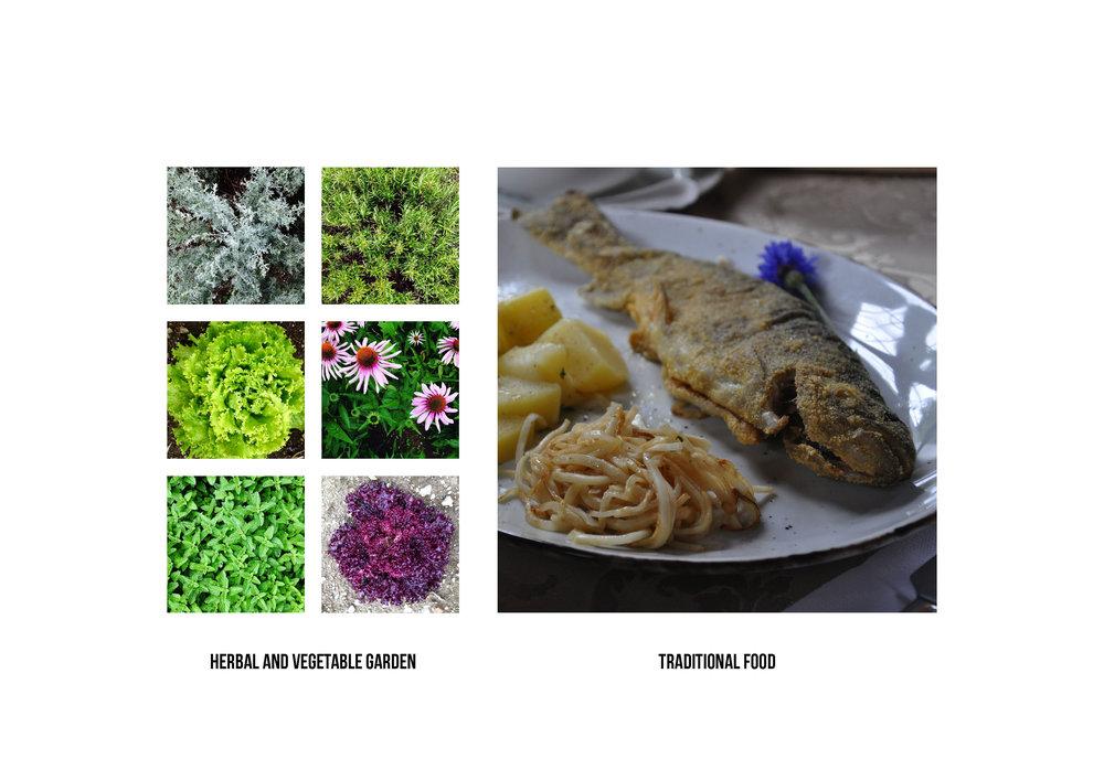 AAVSS16__Food Odyssey_Page_09.jpg