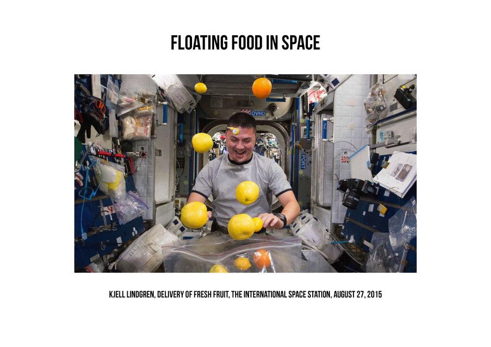 AAVSS16__Food Odyssey_Page_22.jpg