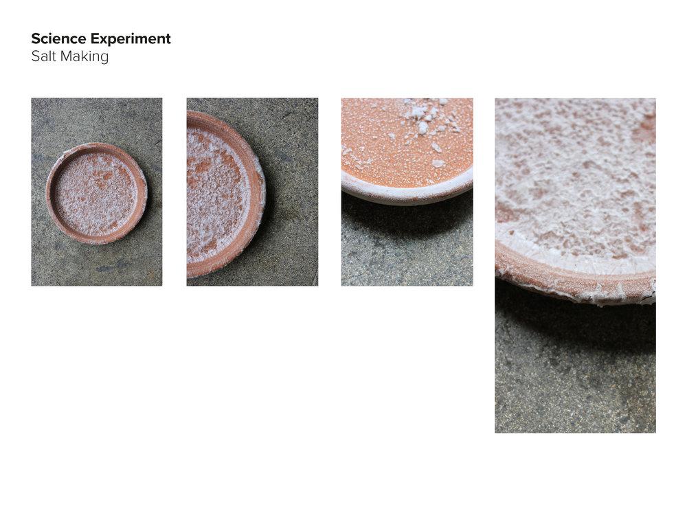 AAnt18_Salt Group_pdfpresentation_final_Page_40.jpg