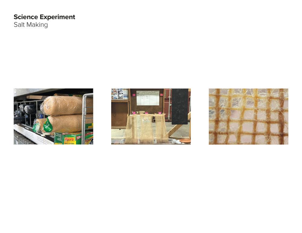 AAnt18_Salt Group_pdfpresentation_final_Page_42.jpg