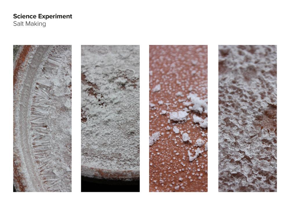 AAnt18_Salt Group_pdfpresentation_final_Page_41.jpg