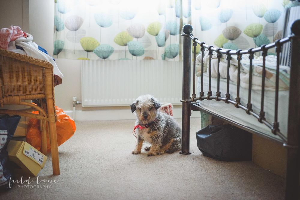 The Mere Resort Wedding Photography Cheshire-6.jpg