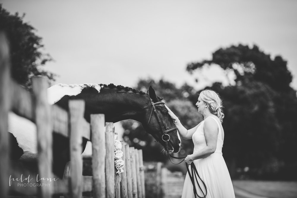 horse wedding photography-3.jpg