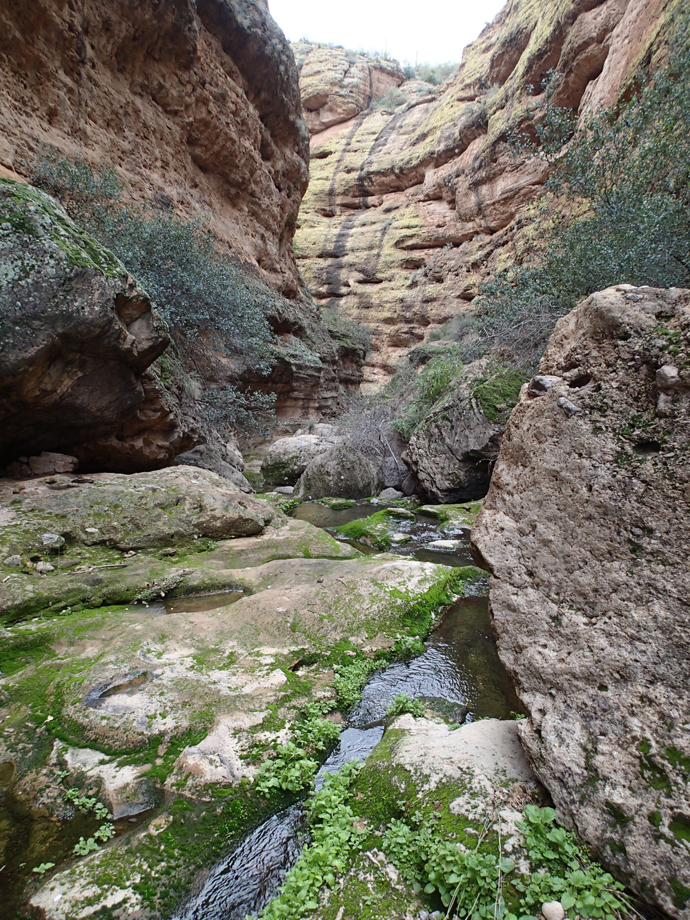Apache Trail Canyon - Canyoneering, AZ