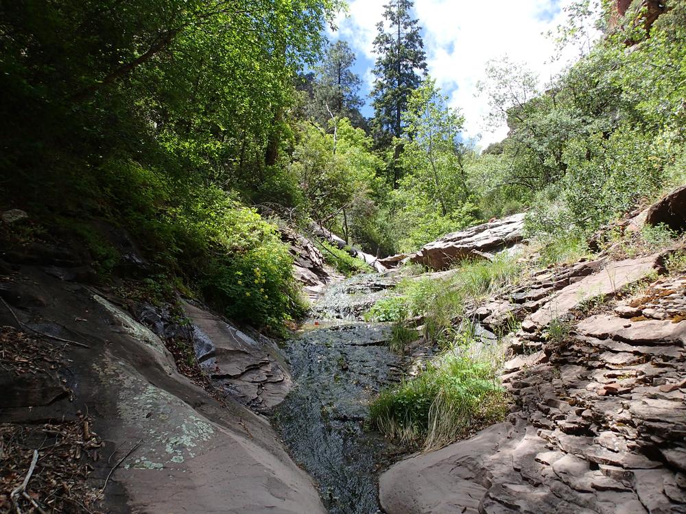 Pueblo Canyon, AZ - 092