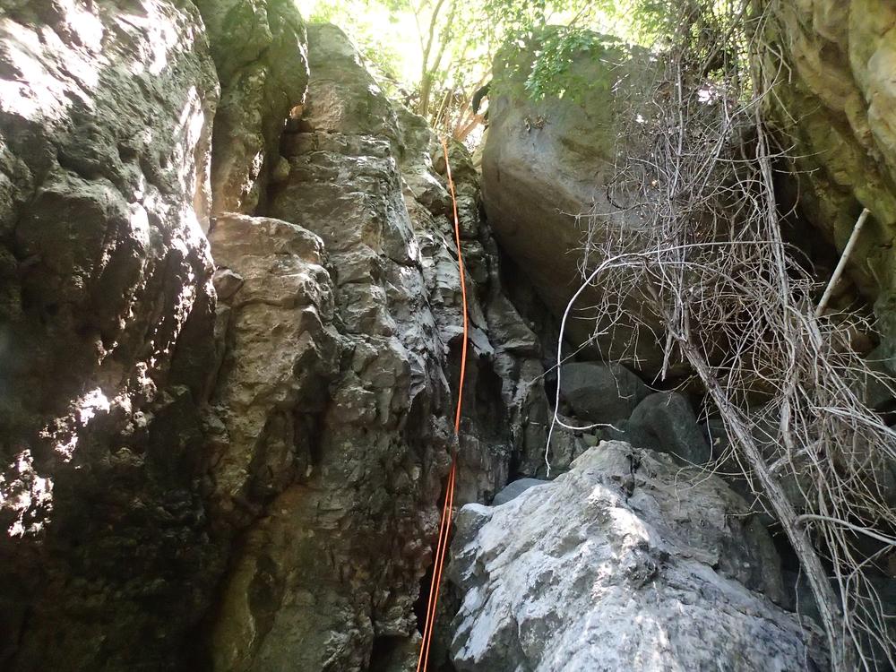 Pueblo Canyon, AZ - 142