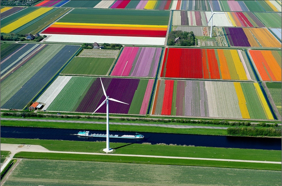 Tulip fields, Spoorbuurt, Holland    The famously photogenic tulip fields in Holland are still incredibly photogenic from above.