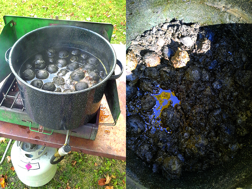 Walnuts cooking away – pretty gross looking!