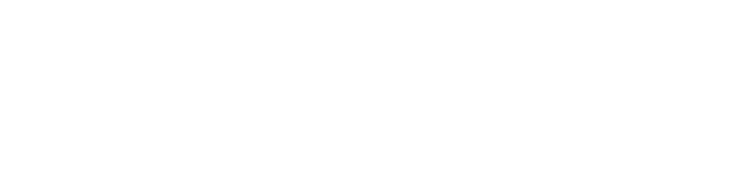 Woolsey Protection Agency