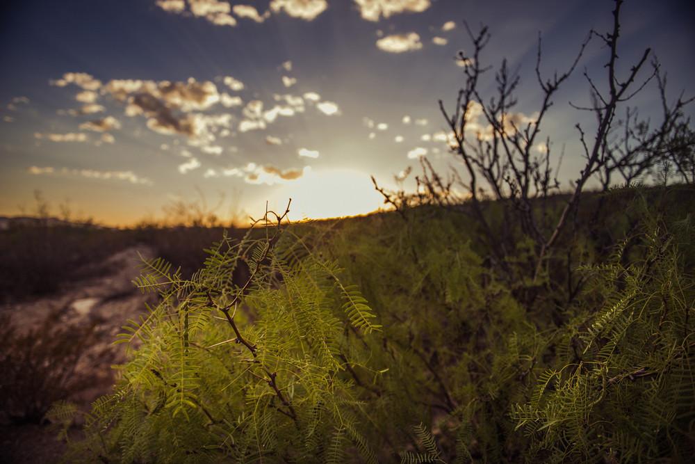 Sunset.Chinati Hot Springs, Ruidosa, Texas.