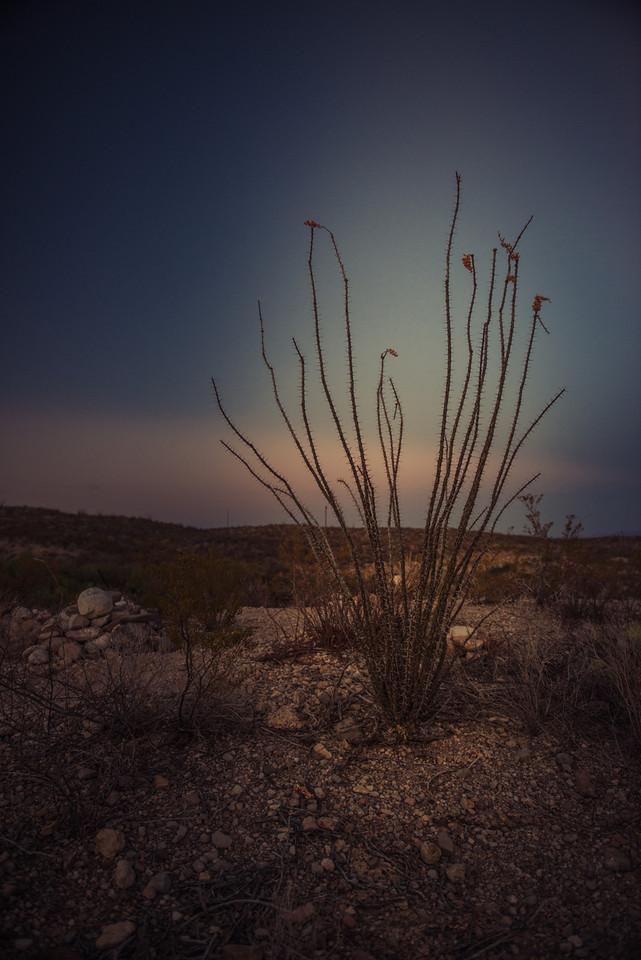 My favorite.Chinati Hot Springs, Ruidosa, Texas.