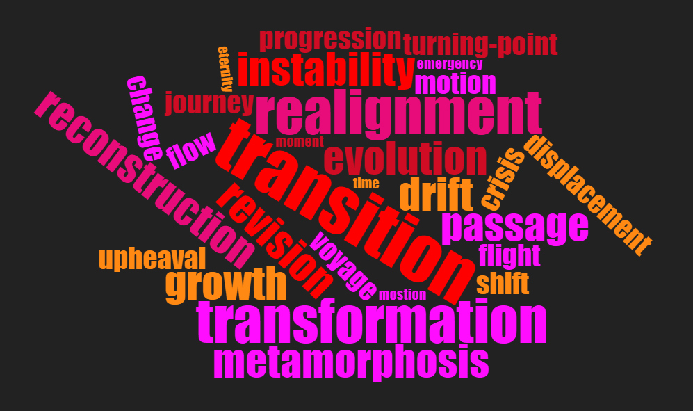 transition wordcloud 1.jpg